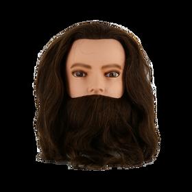 Sibel Tête d'Apprentissage Karl With Beard